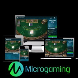 collection-jeux-blackjack-microgaming